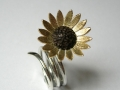 RINGELBLUME, Sonnenblume